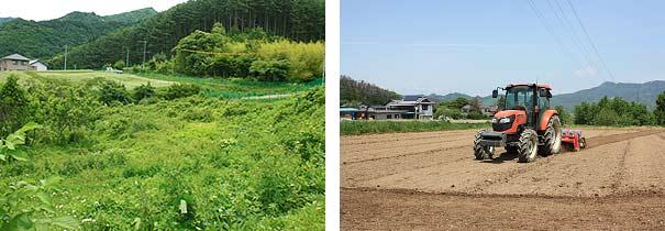 遊休荒廃農地の解消の取り組み