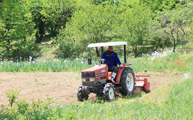 遊休農地を耕すスタッフ